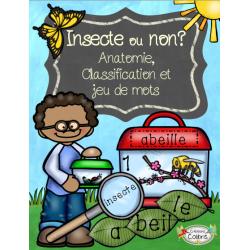 Insectes, Anatomie, classification et jeu de mots