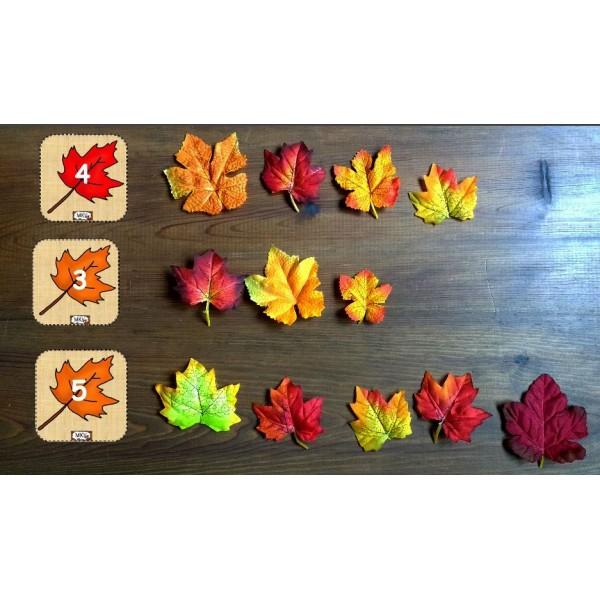 Dénombrement feuilles d'automne