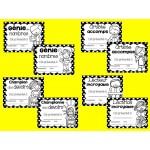 Certificats de fin d'année - Noir et blanc