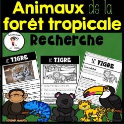 Recherche Animaux de la forêt tropicale