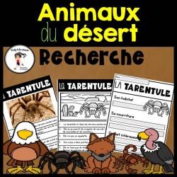 Recherche Animaux du désert