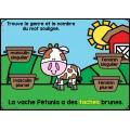 Genre et nombre Cartes BOOM Learning - La ferme