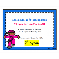 Ninjas de l'imparfait - 2e cycle