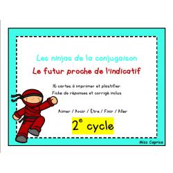 Ninjas du futur proche - 2e cycle