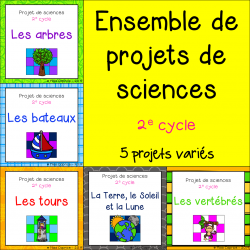 Ensemble de 5 projets de sciences