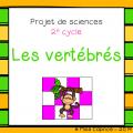 Ensemble de 5 projets de sciences