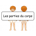 Mots étiquettes -  Corps Humain