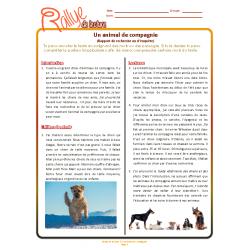 Lecture Rallye - Animal de compagnie