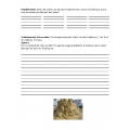 Français texte à partir d'une image-Château sable