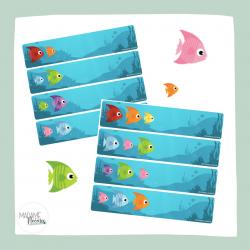 Les algorithmes des poissons