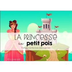 LA PRINCESSE AU PT POIS-Les fonctions ds la phrase