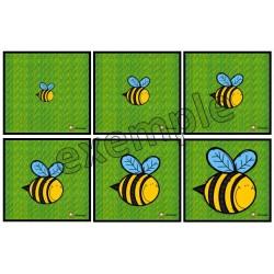 Insectes et bestioles: ordre de grandeur
