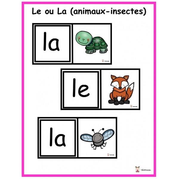 Le ou La (animaux et insectes)
