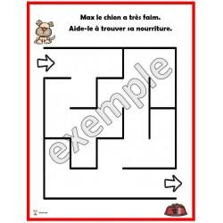 Les labyrinthes (animaux domestiques)