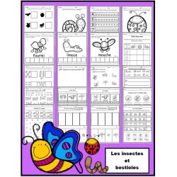 Insectes et bestioles: activités (papier- crayon)