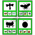 Insectes et bestioles: ombres