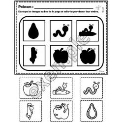 Les ombres: pommes et arbres