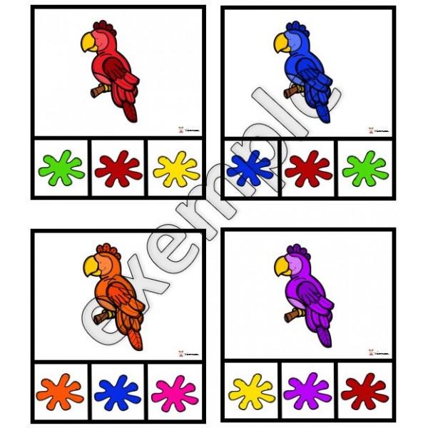Couleurs: cartes à pinces (perroquets)