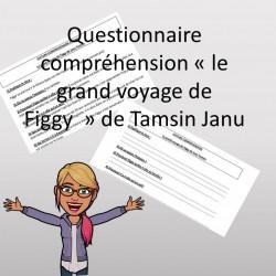 questionnaire le grand voyage de figgy