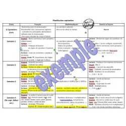 Planification globale - détaillée 5e année