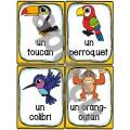 Animaux de la forêt tropicale - Vocabulaire