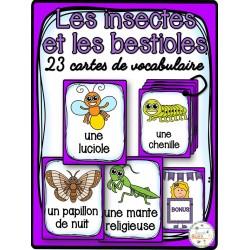Insectes et bestioles - Cartes de vocabulaire