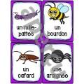 Les animaux - Ensemble des cartes de vocabulaire