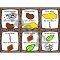 Les plantes et le sol - Ensemble complet