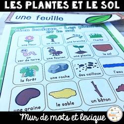 Les plantes et le sol - Vocabulaire et lexique