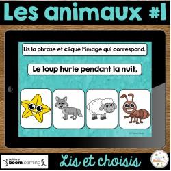 Lis et choisis - Les animaux #1 - Cartes Boom