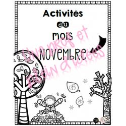 Activités du mois de novembre 1re année