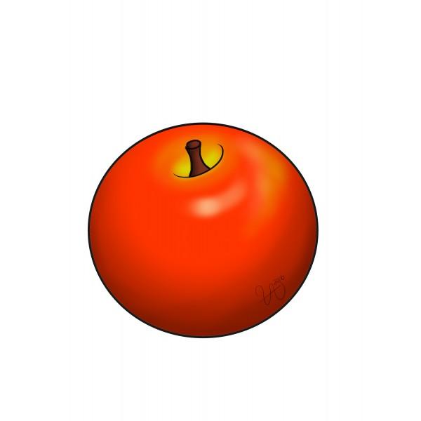 Clipart pomme
