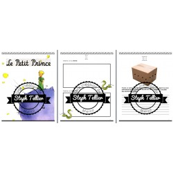 Projet du Petit Prince 24 pages