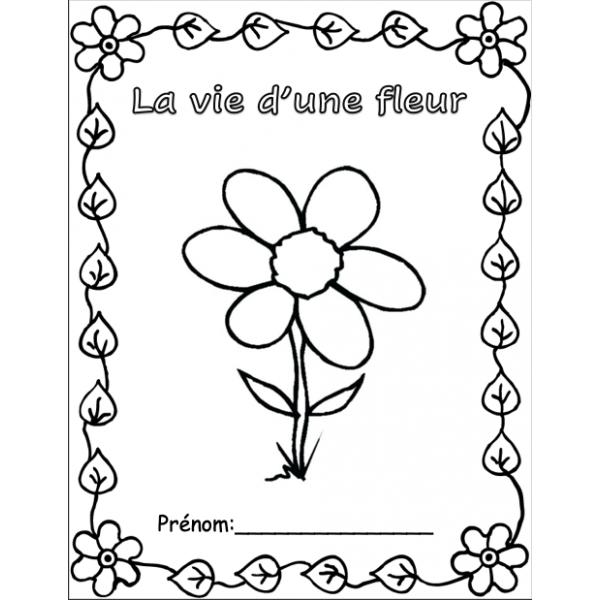 La vie d'une fleur