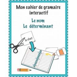 Grammaire interactive: noms, déterminants