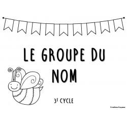Cartes à tâches 3e cycle - Groupe du nom