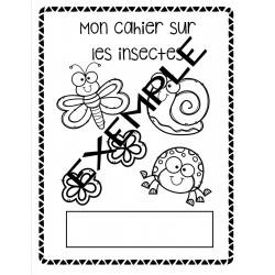 Cahier autonome - les insectes
