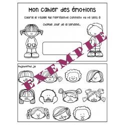 Affiches et cahier des émotions