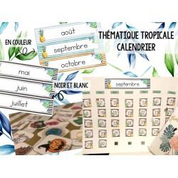 Thématique tropicale - Calendrier