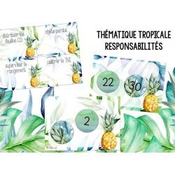 Thématique tropicale - Responsabilités Modifiable