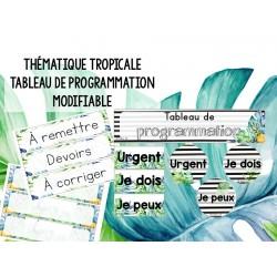 Tropicale - Tableau de programmation