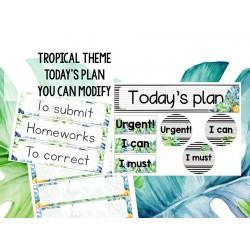 Tropical - Program board