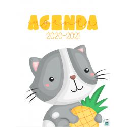 Planificateur 20-21(5 périodes)