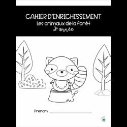 Ensemble 10 «Cahiers d'enrichissement» 2e année