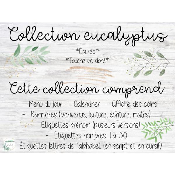 Décor de classe eucalyptus en cursif