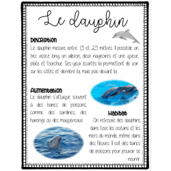 Informations animaux marins