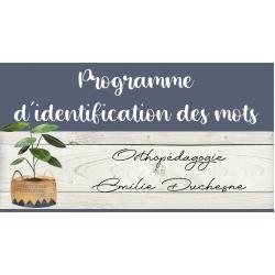 Programme d'identification des mots