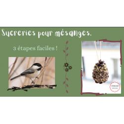 Sucreries pour oiseaux