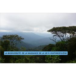 Biodiversité : naissance de la vie et Anthropocène