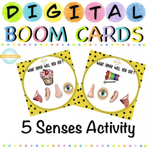 Five Senses Activity with Sound